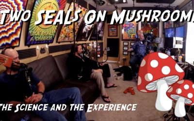 Two Navy SEALs Discuss Mushrooms – TSAW 013
