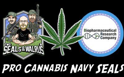 Legal Cannnabis for Veterans