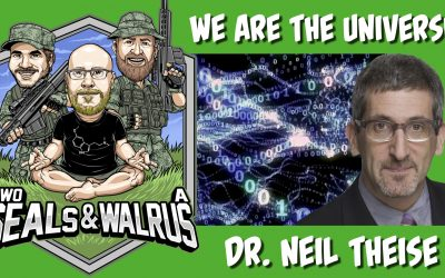 Science Proves You Are the Universe – Dr. Neil Theise